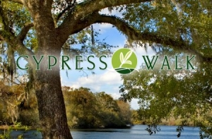 Cypress Walk Fort Myers FL 33966