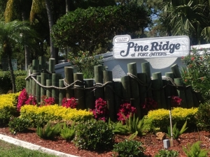 Pine Ridge Real Estate